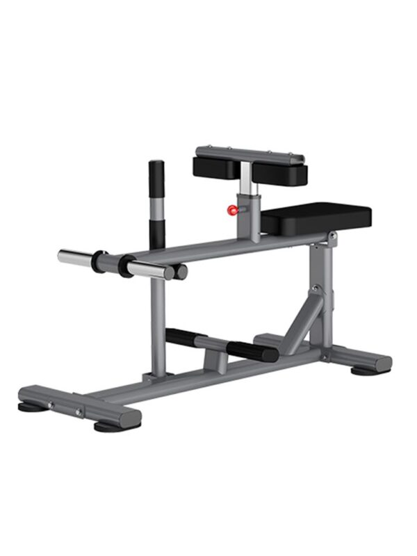 Insight Fitness Seated Calf Raise DR011