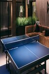 Table Tennis Image for Illustrative Purposes